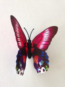 What's mamam's mind  muurstickersstore 3d vlinder