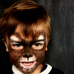 marije schmink mevrouw tijgers