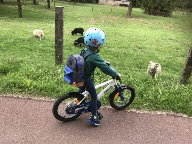 fietshelm nutcase