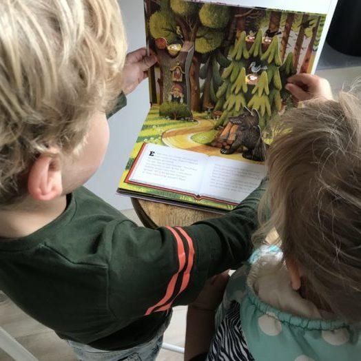 Roodkapje kinderboek