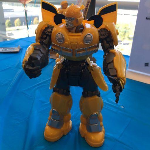 Transformer bumble bee