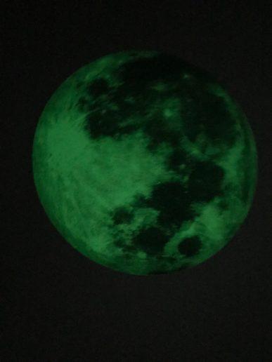 Glow in the dark wereldbol