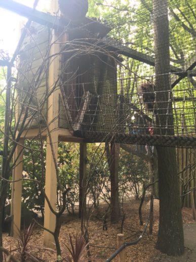 Dierenpark Amersfoort klimmen