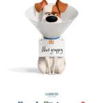 Poster huisdiergeheimen 2