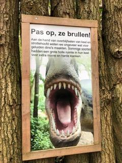 dinos in dierenpark Amersfoort