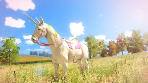 Unicorn Princess Nintendo Switch