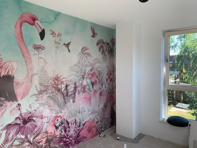 photowall flamingo behang