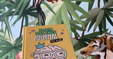 brain balance journal kids