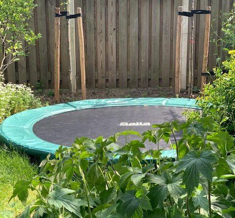 trampoline salta