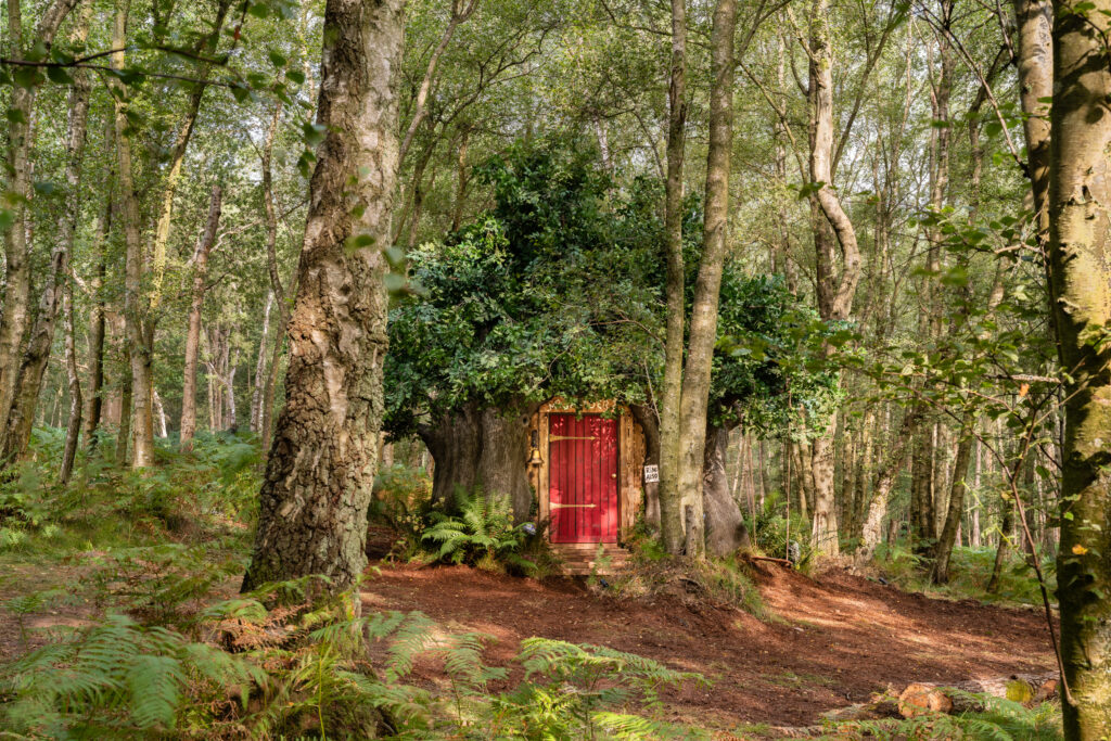 _Winnie the Pooh House 1 - Airbnb - CREDIT Henry Woid